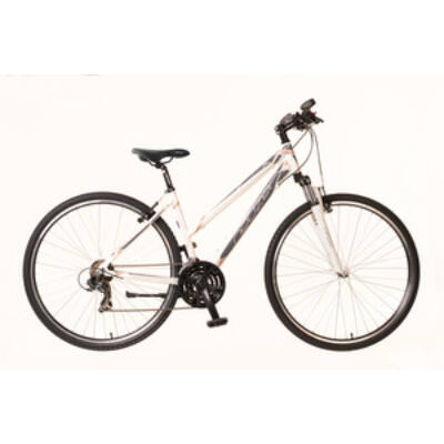 Kerékpár Neuzer Cross X1 női fehér/szürke-bronz 19